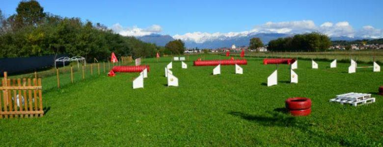 Centri addestramento cinofilo Torino
